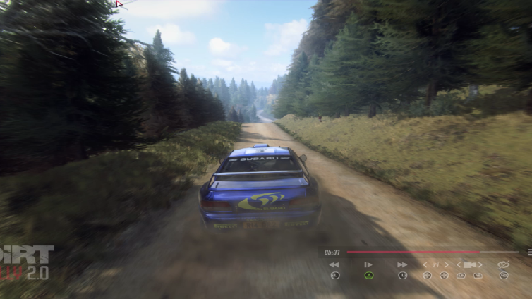 DiRT Rally 2.0 (Win 10)